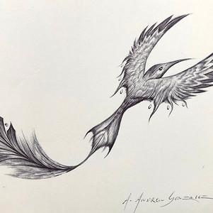 - Colibri -