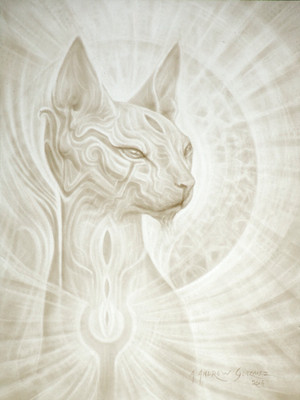 - Cat Magic -