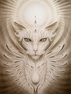 - Mystic Cat -