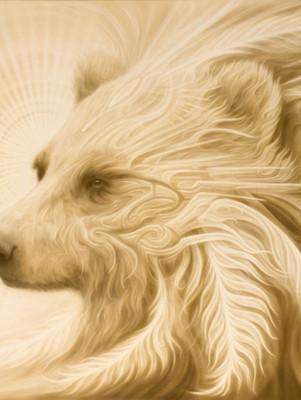 - Spirit Bear -