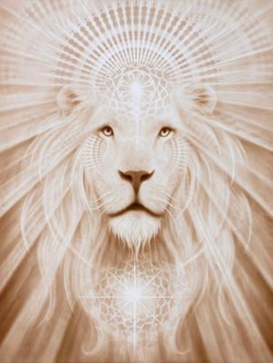 - Spirit Lion -