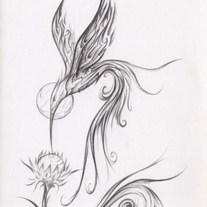 - Dance of the Hummingbird -