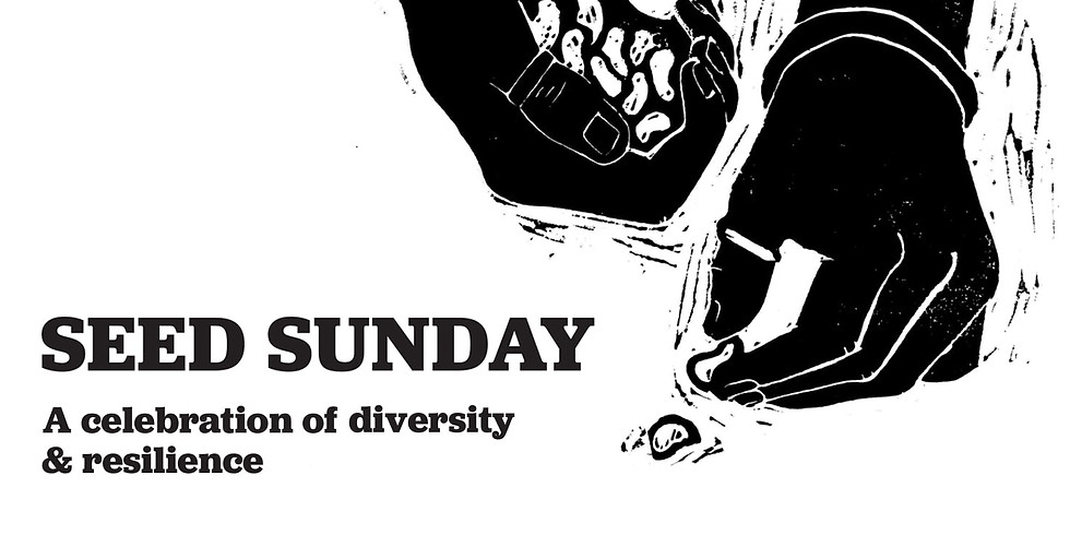 SEED SUNDAY: a celebration of diversity and resilience