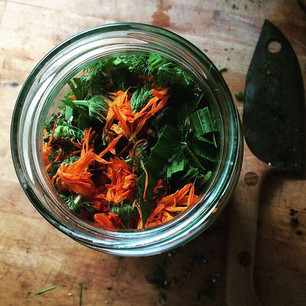 Balm making from foraged plants