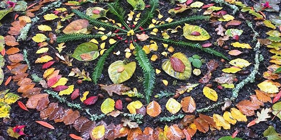 November TIDE Forest School Session