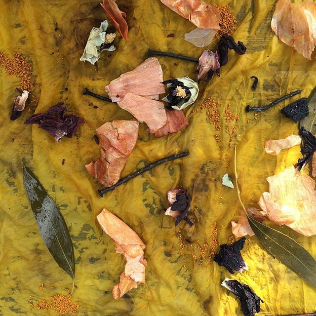 Colours of Summer: Natural Dyes of Cornwall