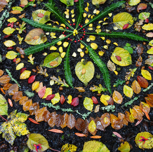 Mandala Making