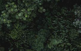 isabella-juskova-xotmnyn3gdc-unsplash-12
