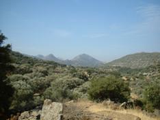 Sur Tinos.jpg