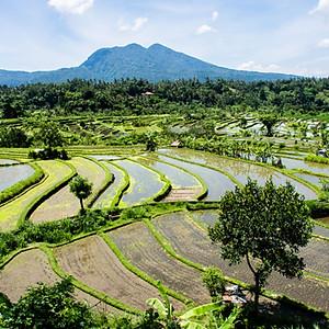 BALI, Lombok de la Terre au ciel