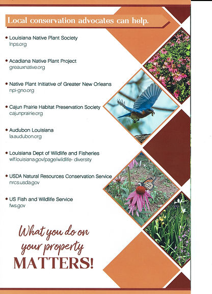 LCH Brochure Scan 4pg_002.jpeg