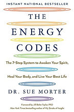Energy Codes Book.jpg