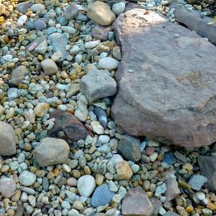 Gallery-Images-Dry-Creek-Bed-3.jpg