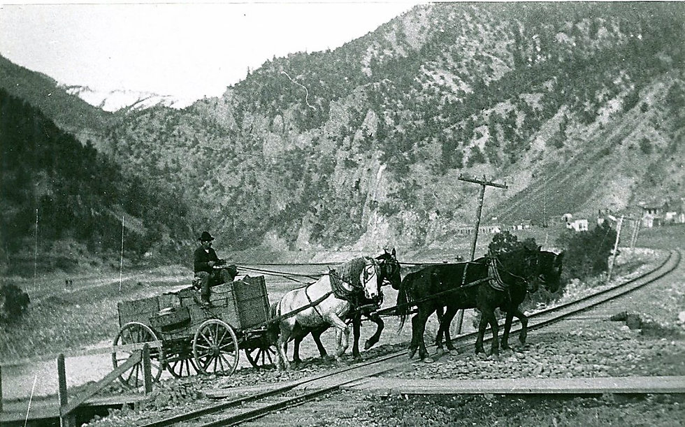 Horse and Wagon.jpg