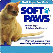 Soft_Paws_Cat__67434.1409658008.1280.128
