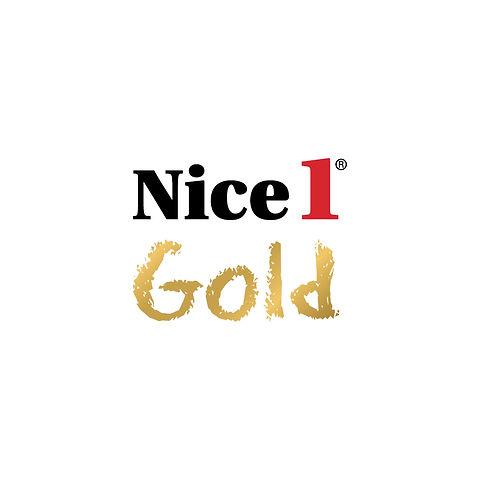 Nice1  logos2.jpg