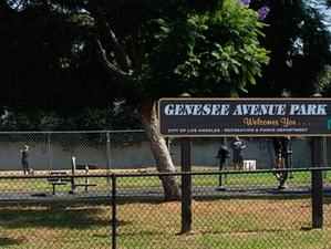 Improvements to Genesee Park!