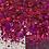 Thumbnail: Pomegranate Chunky Holographic