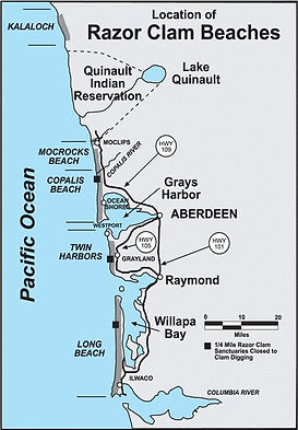 Washington Razor Clam Beaches