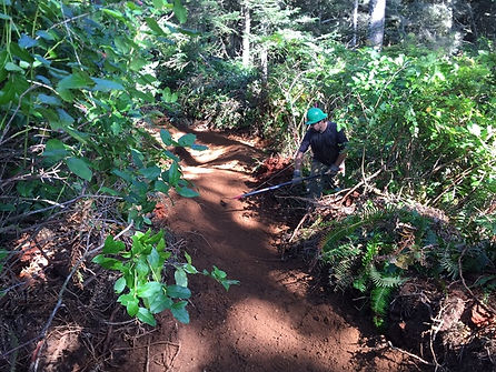 Trailbuilding in Seabrook