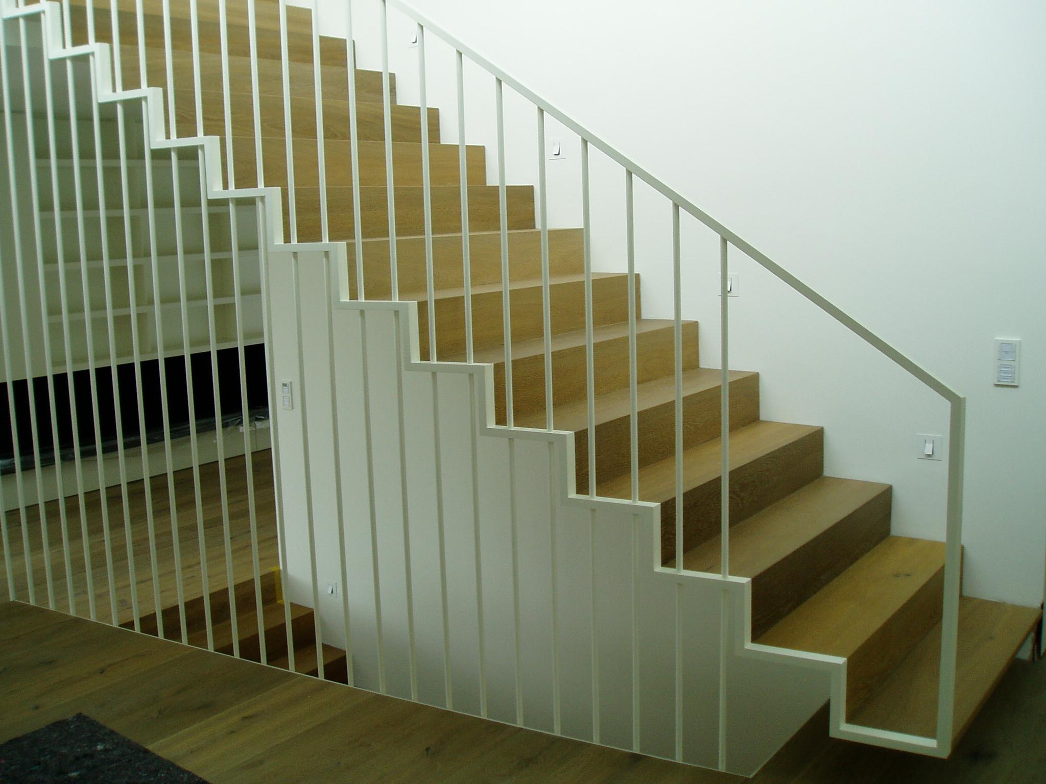 Vogl Treppe 22.02.2011 011