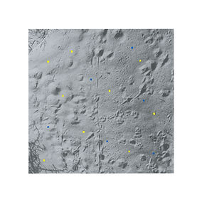Cover - Changing Landscapes (Grand Escal