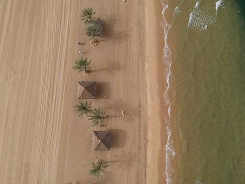 منتجع شاطئ النخيل