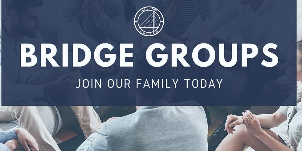 Intro to Bridge Groups