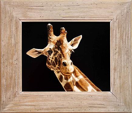 Vivian Etmanczyk's   Sunny Giraffe