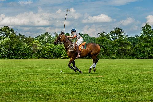 Polo Horse Rider