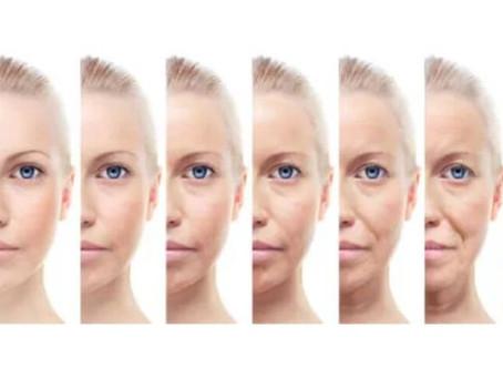 Procesos de cambios en el envejecimiento