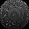 ivbv logo.png