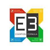 Partner Logo - E3.png