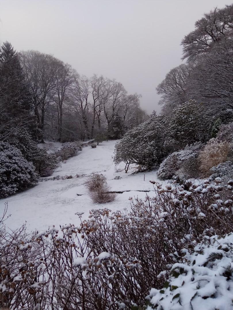 Portrait_rydal_mount_snow copy.jpg