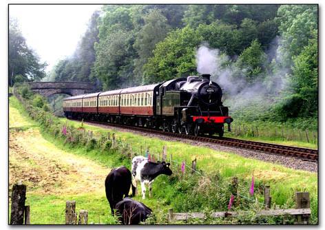 Steaming through Lakeland.jpg