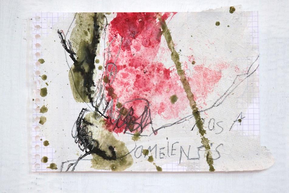 2013-Pigment,_encre_sur_papier_quadrillé_(2).jpg