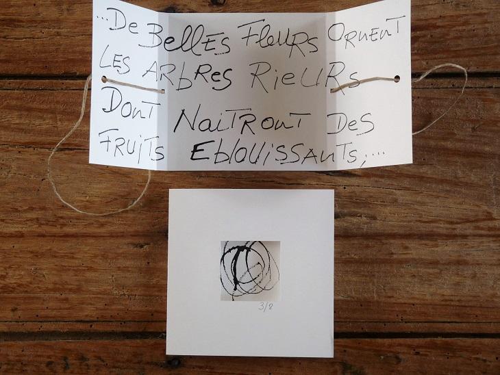 2012-Livre d'artiste, encre (3).jpg