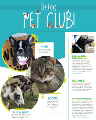 Living Pet Club November