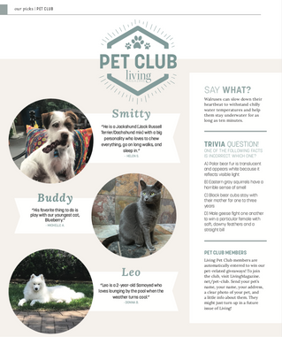 Living Pet Club: December
