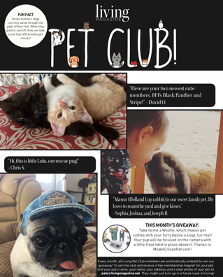 Living Pet Club August