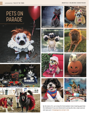 Talk Of The Town: Pets On Parade