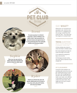 Living Pet Club: November