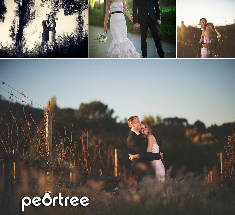 autumn stellenbosch wedding molenvliet estate 20