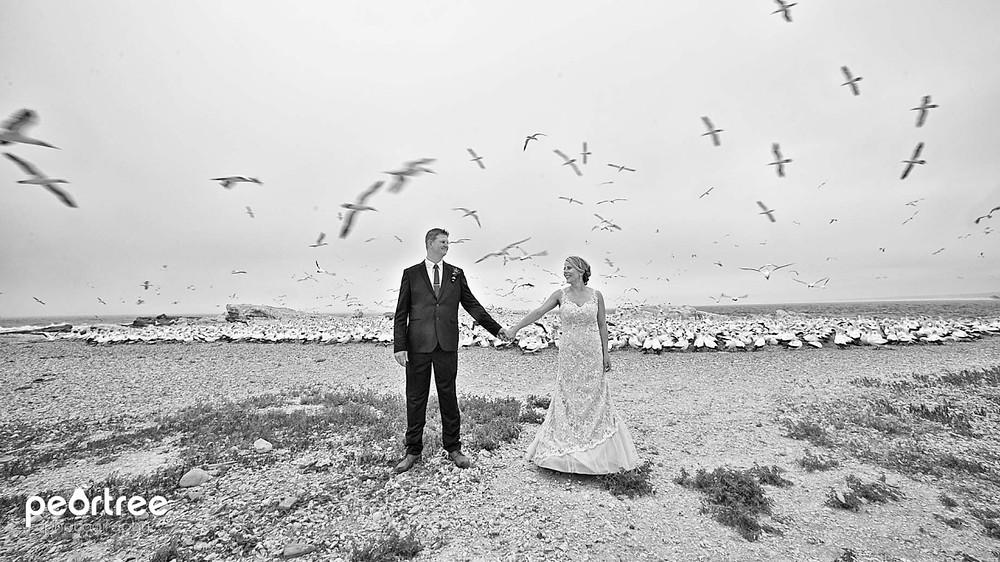 westcoast-wedding-lambertsbay_48