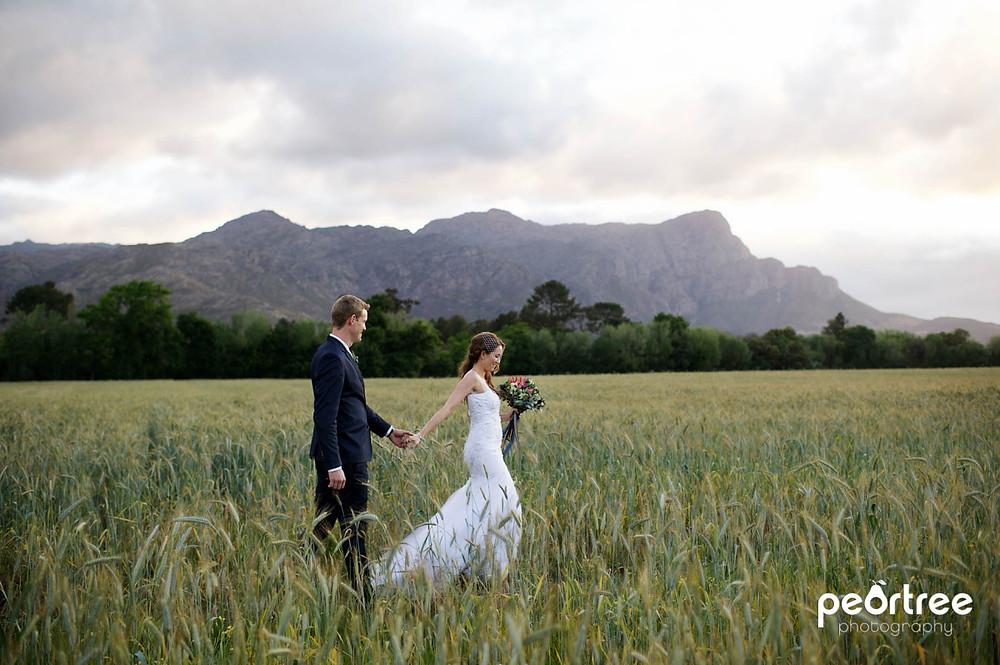 Dieu Donne Top Weddings_55