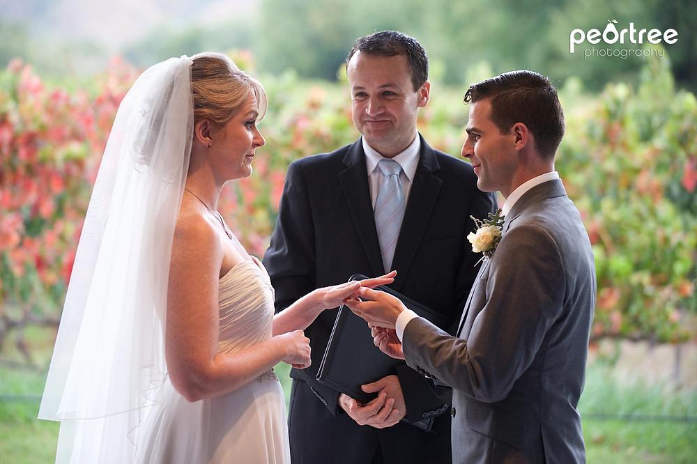 wedding franschhoek holdenmanz_35