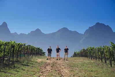 wine photographer stellenbosch