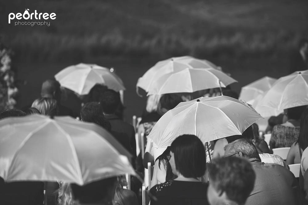 highlandgate-dullstroom-wedding_37