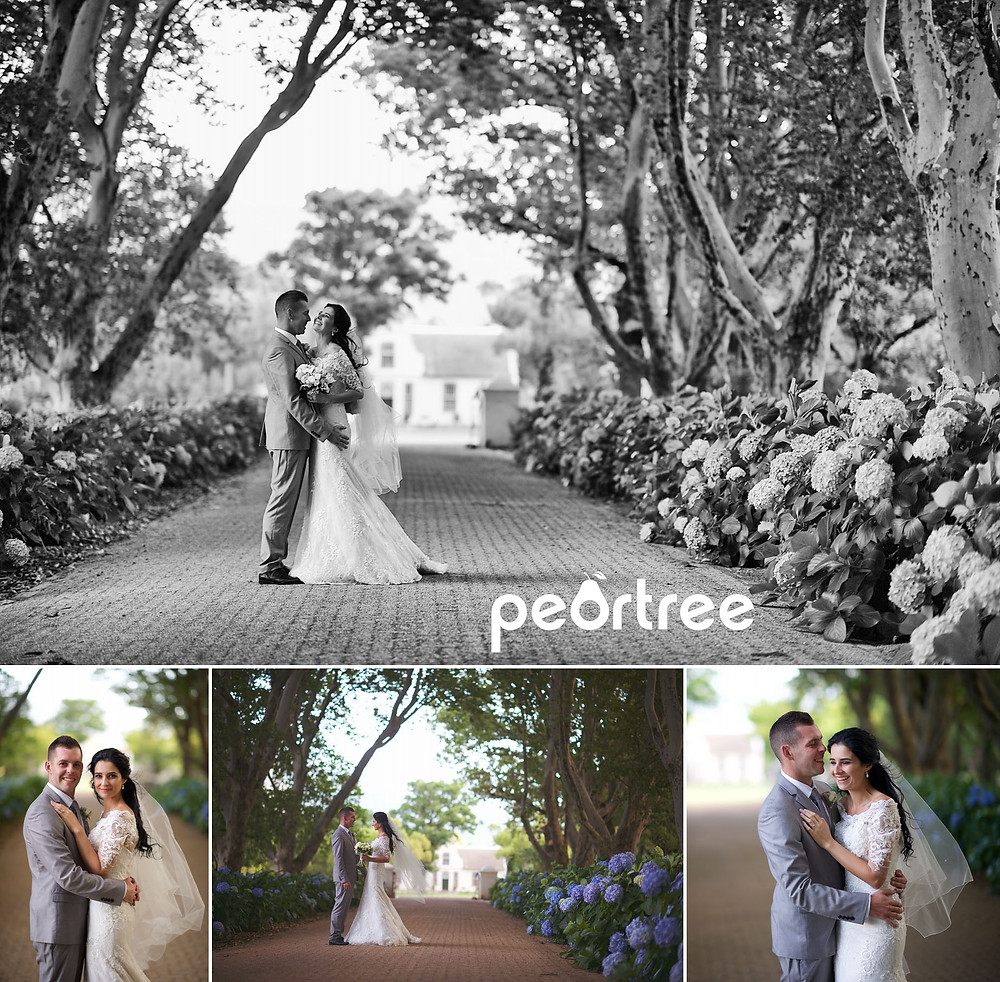 boschendal wedding 14