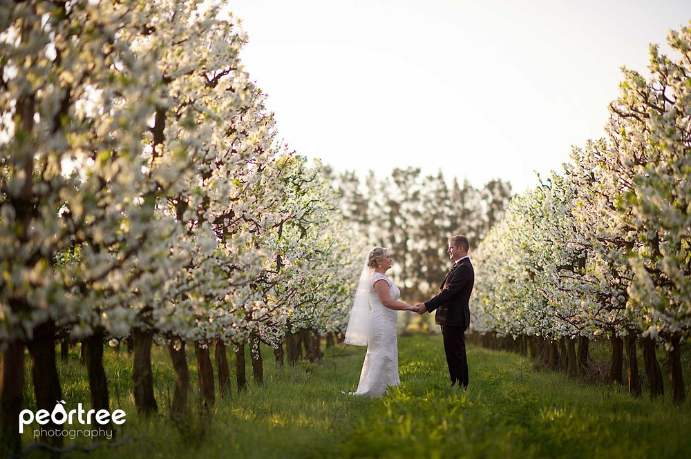 nooitgedacht-spring-wedding_65